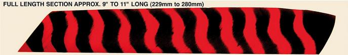 Ficha Técnica de TRUEFLIGHT - PLUMA FLU-FLU - 10